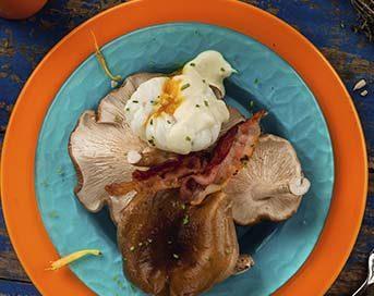 Huevos shiitake setas de curva