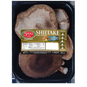 Shiitake producto 100